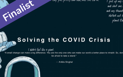 Solving the COVID Crisis